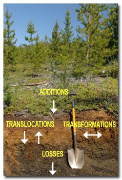 Soil processes soil formation and soil processes for Soil genesis